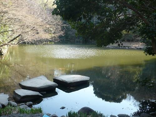 Lake at the University of Tokyo